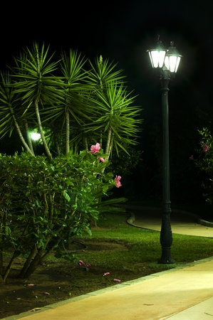 garden lamp: Night picture of the lamp in the park. Decorative garden in the night. Stock Photo