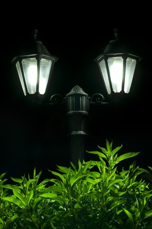 Night picture of the lamp close up. Decorative garden in the night. photo