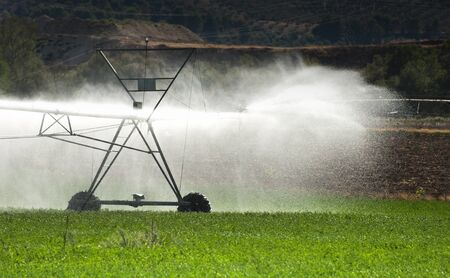 Irrigation Systems in Agriculture photo