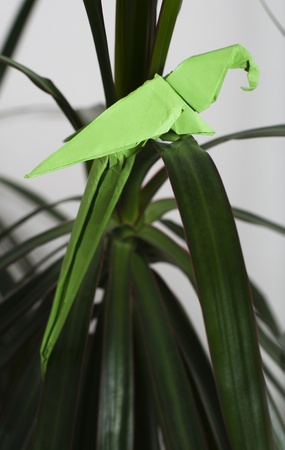 Parrot on a tree. Folded origami style. Paper made parrot. photo