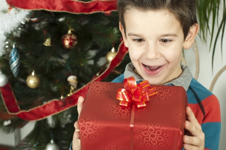 Happy child receive the gift of Christmas in front of the Christmas tree. Stock Photo - 16792365