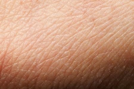 epiderme: La peau humaine de pr�s. Structure de la peau Banque d'images