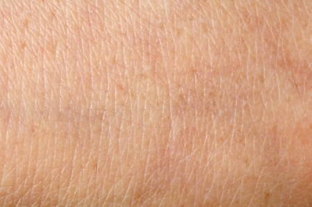 Human skin close up. Structure of Skin Stock Photo - 17061966