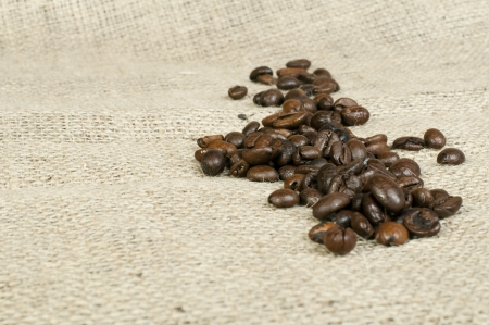 Coffee beans on tat. Copy space photo