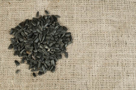 Sunflower seed on burlap brown background Stock Photo - 17268189