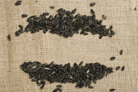 Sunflower seed on burlap brown background Stock Photo - 17268142