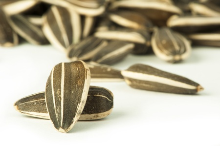Raw sunflower seeds close up  in shells white isolated Stock Photo - 17515531