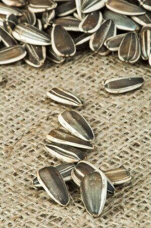 Closeup sunflower seeds on burlap. Studio shot Stock Photo - 17516004