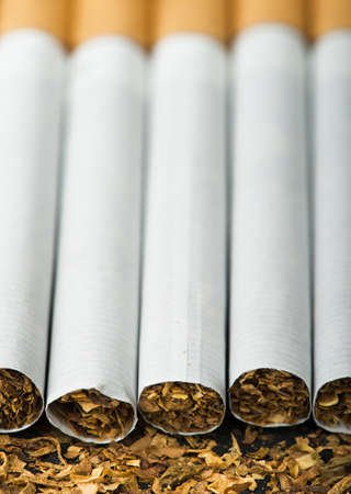 Arranged in a row cigarettes and scattered tabaco photo