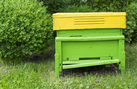 Green beehive located on the green lawn photo