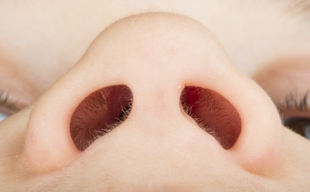 Human nose close up studio shot  Lowest view point