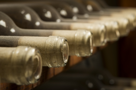 Wine bottles on shelf. Wine cellar. Close up wine bottles. photo