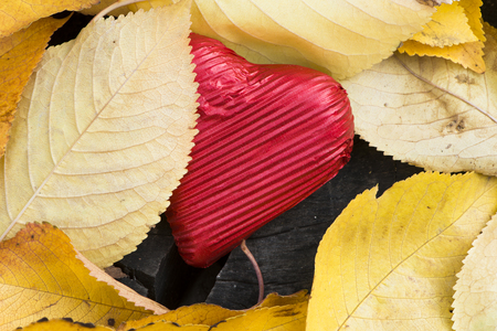 Red wrapped heart and autumn leafs. Close up photo