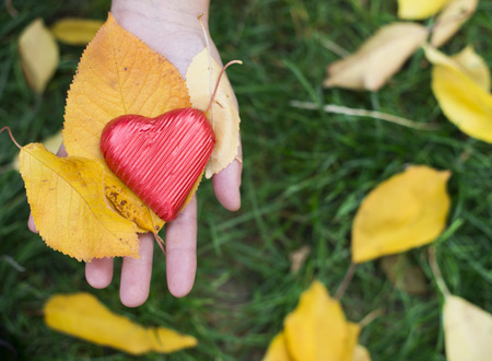 Hand holding Red wrapped heart and autumn leafs photo