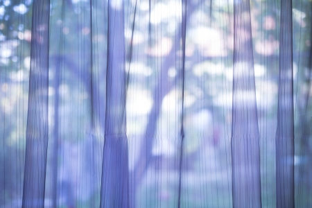 Purple transparent curtain on a window photo