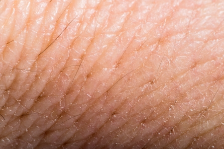 Close up human skin. Macro epidermis texture