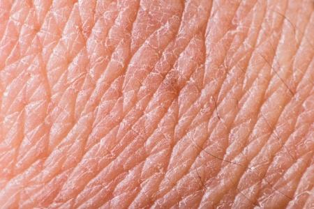 La textura de la piel humana. Extreme close up macro shot
