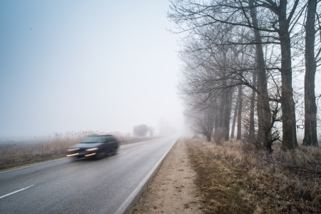 Car on a road in fog. Morning in fog photo