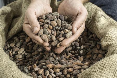 Hand hält Kakaobohnen in einer Tasche Lizenzfreie Bilder