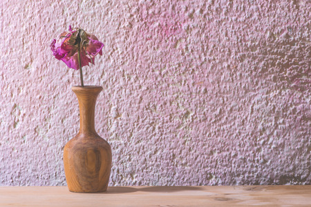 Withered rose flower on pink wall photo