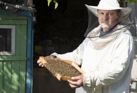 Beekeeper with honeycombs in hands. Bulgaria, Pleven photo
