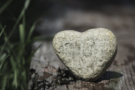 Stone heart shape on wood. Green grass Banco de Imagens
