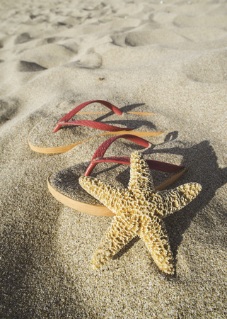 star fish: Pink sandals on the beach in the sand. Star fish