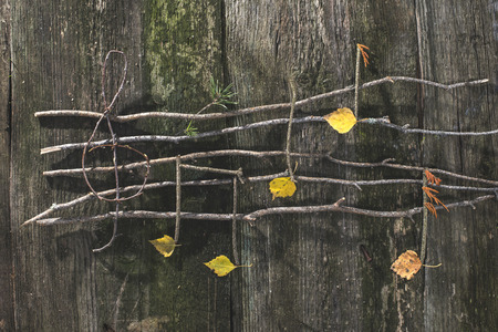 Musical notes conception. Wooden musical notes and leaves