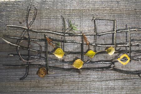 nota musical: Las notas musicales de la concepción. Notas musicales y las hojas de madera Foto de archivo