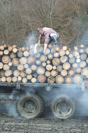 vintage truck: Young man on vintage truck with logs in the forest. Stock Photo