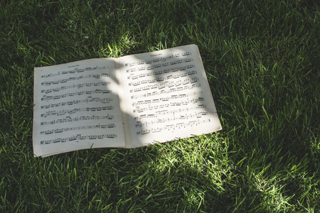 music book: Music book on green meadow. Daylight Stock Photo
