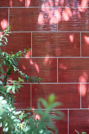 bathroom tiles: Red bathroom tiles and green leaves.