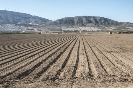 plowed: Plowed land. Sunny day Stock Photo
