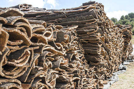 Pile of bark from cork tree