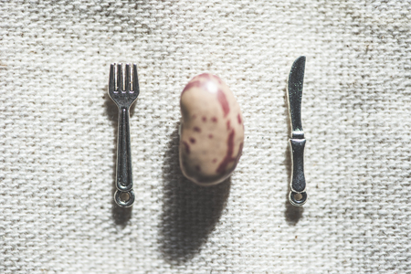 One bean, fork and spoon miniatures on tablecloth.