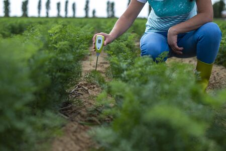 Measure soil with digital device. Green plants and woman farmer measure PH and moisture in the soil. High technology agriculture concept. Stock Photo