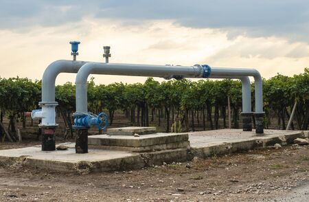 Watering pipes and vineyard. Big irrigation systems.