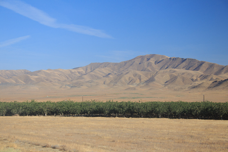farmlands: California Farmlands