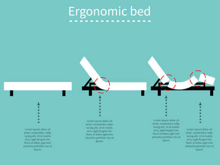 Ergonomic adjustable bed. Flat design.