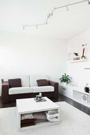 어두운 갈색 나무 바닥에 흰색 카펫 컴퓨터 책상 화면, 소파와 테이블 현대 거실