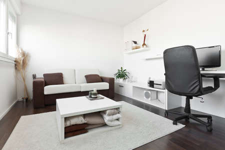 Modern living room with computer desk and the screen, sofa and table with white carpet on dark brown wooden floor