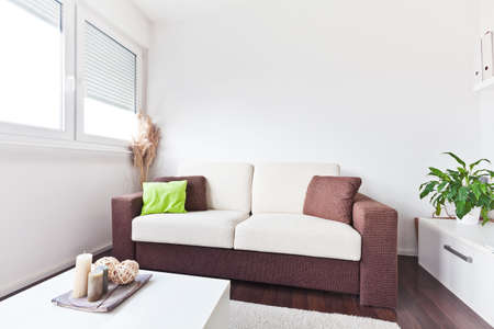 apartment living: White and brown fabric sofa in the living room with brown cushions