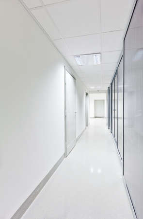 Modern white long corridor with glass doors on one side