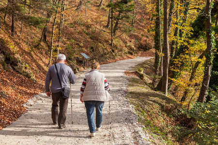 A couple of senior citizens walking on the path through the woods