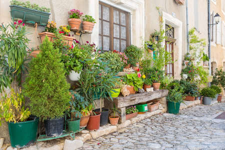 apt: Street with greenery in flower pots on the floor and the walls in Saint-Saturnin-les-Apt, France Stock Photo