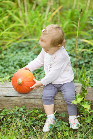 One and a half year old toddler girl sitting on the wooden bench and holding an ripe orange pumpkin
