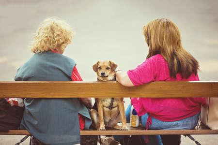 Un chien assis entre les deux femmes qui sont assis et s & # 39 ; asseoir sur le banc dans le parc de la ville Banque d'images - 87480844