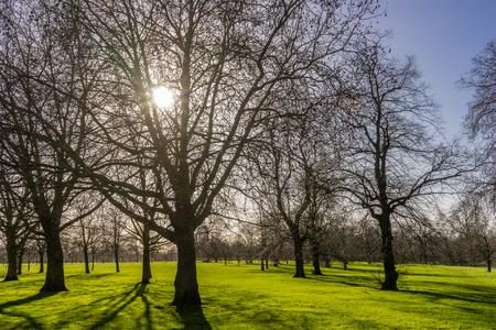 Hyde Park, London, Great Britain
