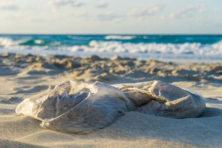 A plastic bag at the beach, pollution