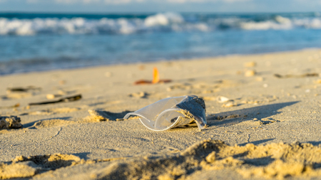 A plastic cup at the beach, pollution